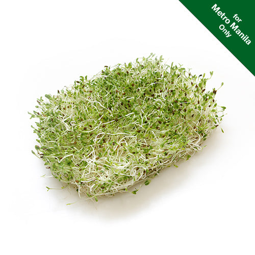 Healthy Options Alfalfa Sprouts 70g
