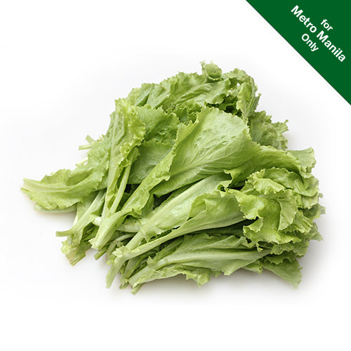 Healthy Options Green Ice Lettuce 190g