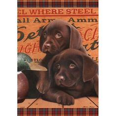 Chocolate Puppies  Flag