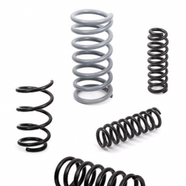 Goldschmitt Coil springs (Supply only)