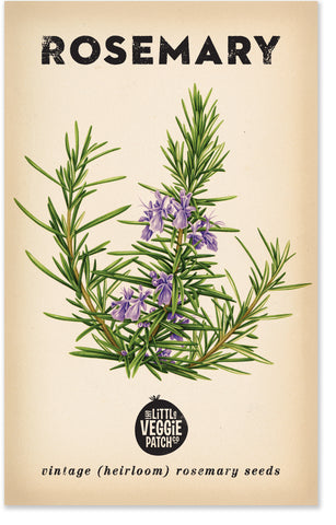 Heirloom Seeds - Rosemary 'Rosy'