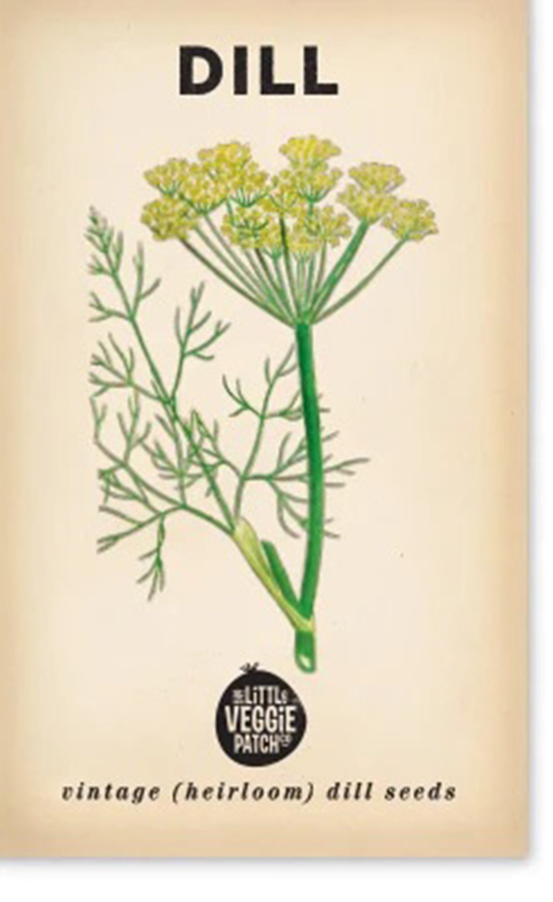 Heirloom Seeds - Dill 'Common'