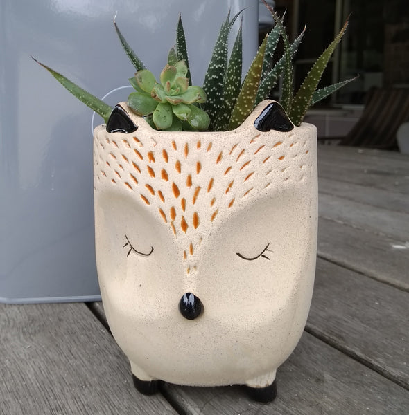 Planter Pot - FOX Medium Valuezy