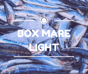 Box Mare Light - Pastificio Buono