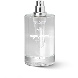 Mega Propre Fragranced Mist, 100 ml - PARFUMS LUBNER