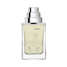 Laden Sie das Bild in den Galerie-Viewer, Osmanthus EdT - PARFUMS LUBNER
