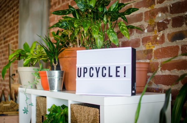 Upcycle! written in black letters on a lightbox on a white shelf with plants and a red brick wall behind