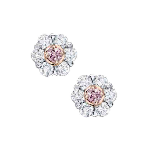 Pink Kimberley Pink Diamond Cluster Stud Earrings
