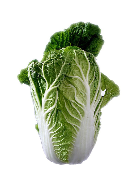 Cabbage Chinese Leaf - ExoticEstore