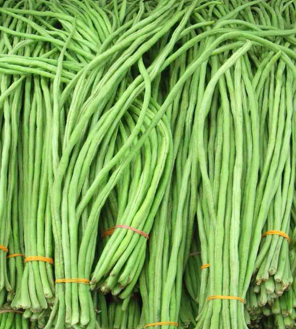 Beans Long Chora Bunch 600g Approx