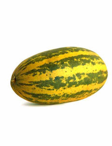 Kerala Indian Cucumber 1pc Approx 450g - ExoticEstore