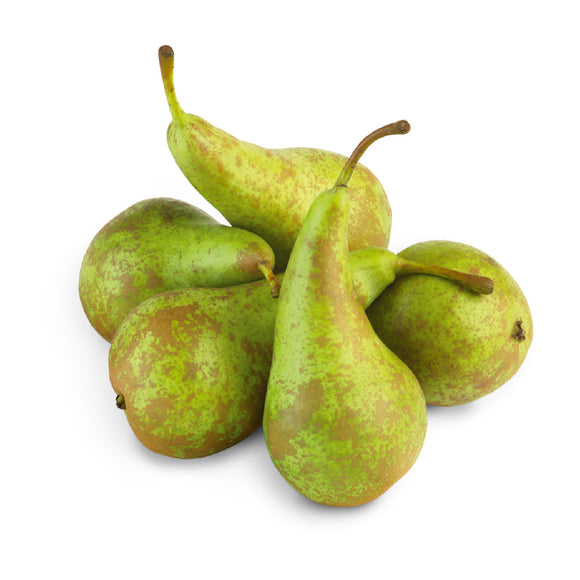 Pear Confernce x 4 - ExoticEstore
