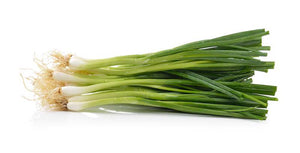 Spring Onion 1pc - ExoticEstore