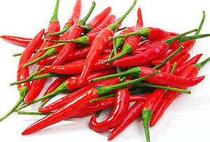 Chilli Thai Red 100g - ExoticEstore