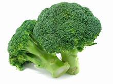 Broccoli 1pc - ExoticEstore
