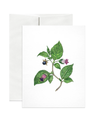 Deadly Nightshade Greeting Card and Envelope by Open Sea Design Co