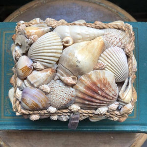 Vintage Shell Trinket /Jewel Box