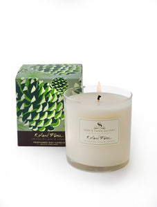 Soap & Paper Factory 65hr Roland Pine Candle