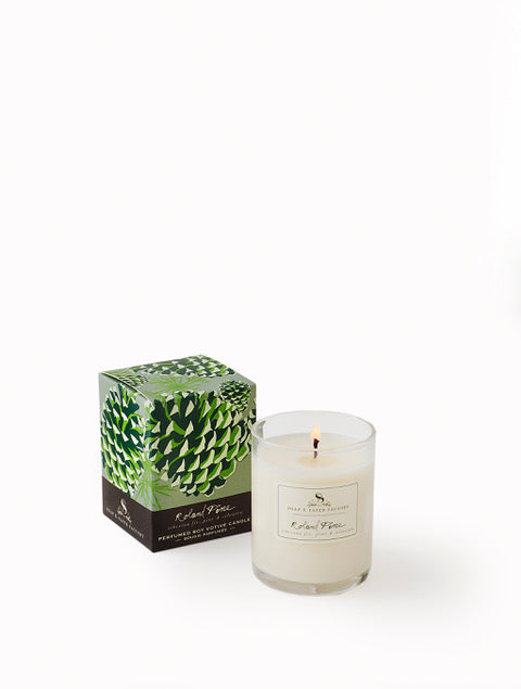 Soap & Paper Factory 20hr Roland Pine Candle