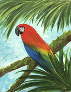 Macaw - Kit/Tutorial DELIVERY ONLY