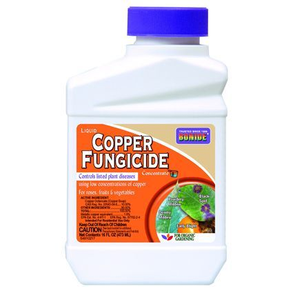 Copper Fungicide Spray 32oz