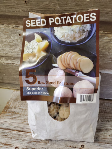 Seed Potato Superior 5# Bag
