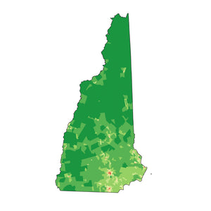 New Hampshire - State Analyzer