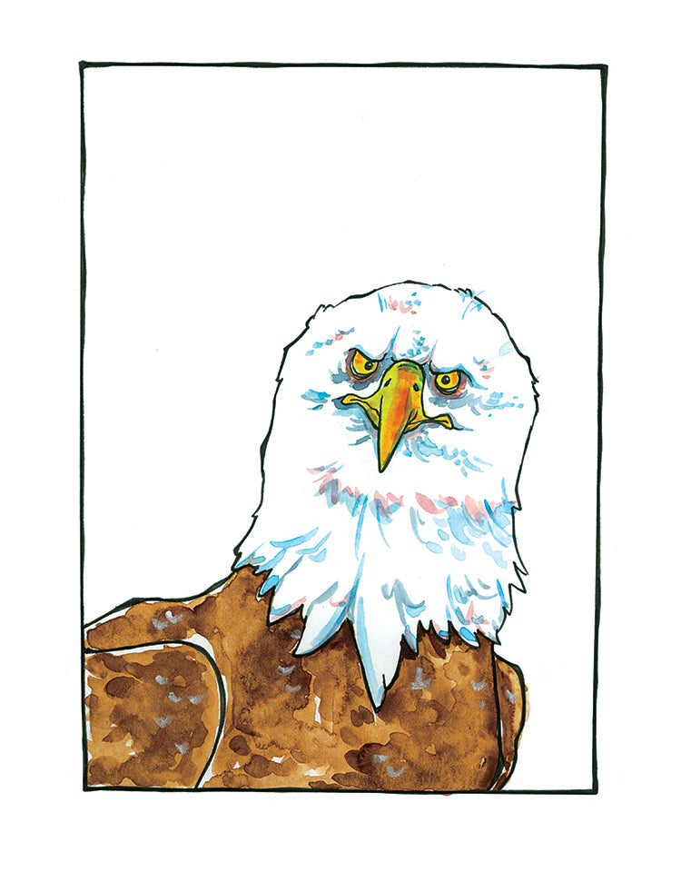 Sandro Bald Eagle Matted Art Print