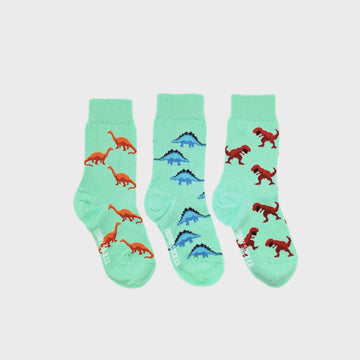 Dinosaur Mismatched Kids Socks