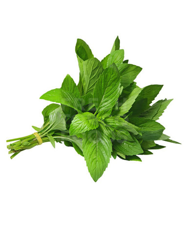 HERBS ( FRESH MINT) PKTS