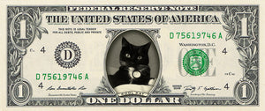 "dollar bill from You're on the Money with a black and white cat on it and the caption ""Kool Kat"""