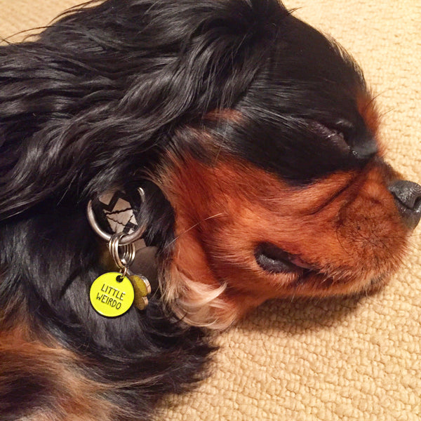 LITTLE WEIRDO Pet Collar Charm