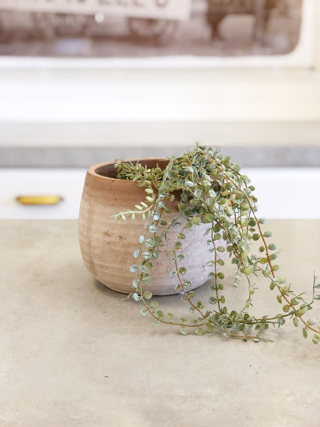 Whitewashed Terra Cotta Planter