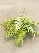 Load image into Gallery viewer, Feather Fern Pick