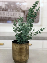 Load image into Gallery viewer, Large Faux Eucalyptus Bunch