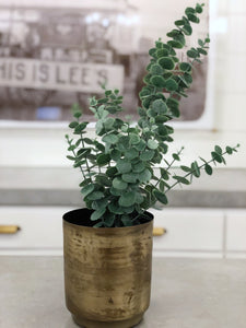 Large Faux Eucalyptus Bunch