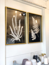 Load image into Gallery viewer, Set of 2 B&W Fern Prints