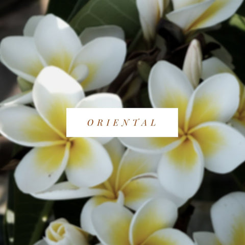 Oriental Soy Candle Scents