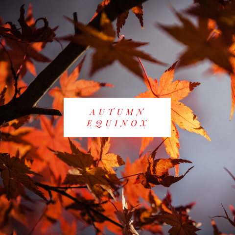 Autumn Equinox Soy Candles