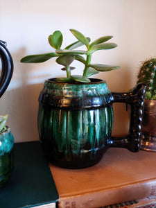 Succulent in a Pottery Mug