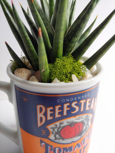 Campbell's Soup Planter