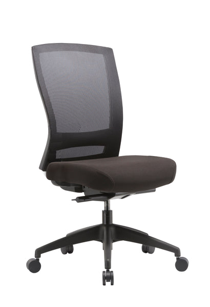 Mentor Chair - Fully Ergonomic Task Chair (No Arms)