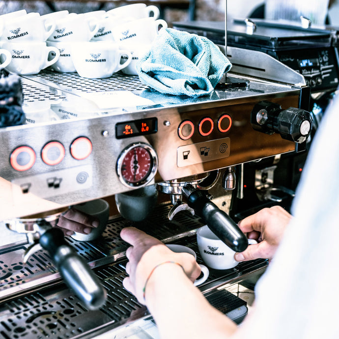 BASIS BARISTA WORKSHOP