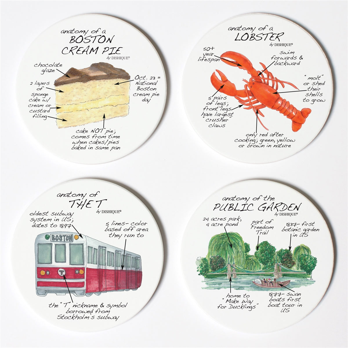 Boston Anatomy Coaster Set