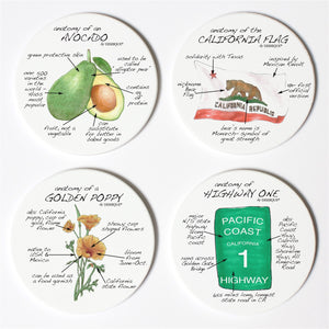 California Anatomy Coaster Set