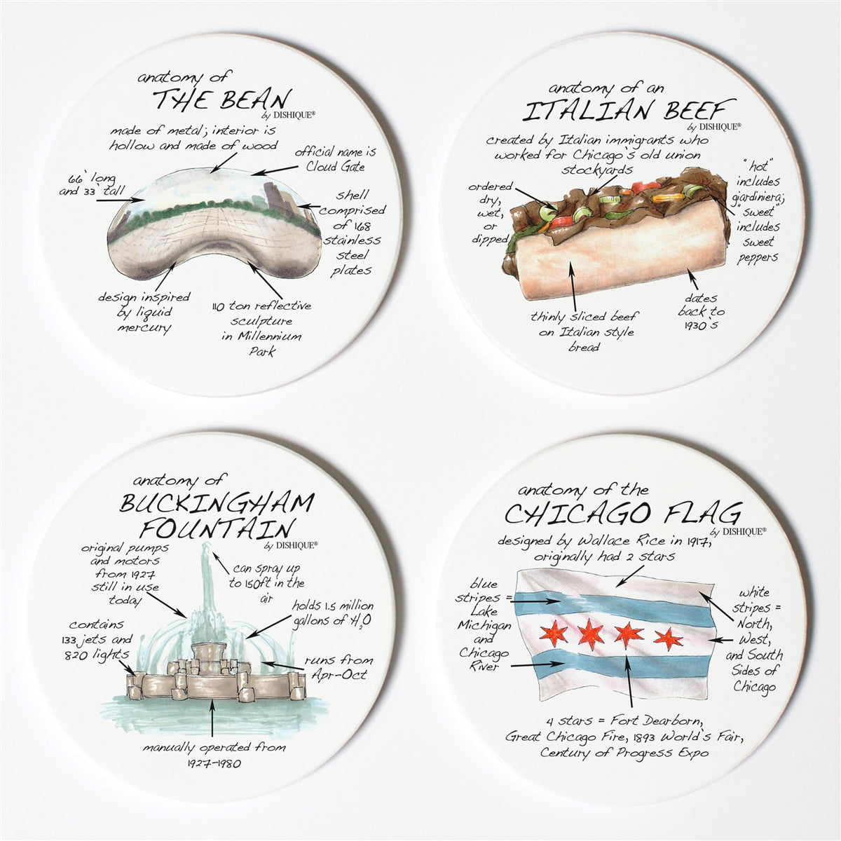 Chicago Anatomy Coaster Set