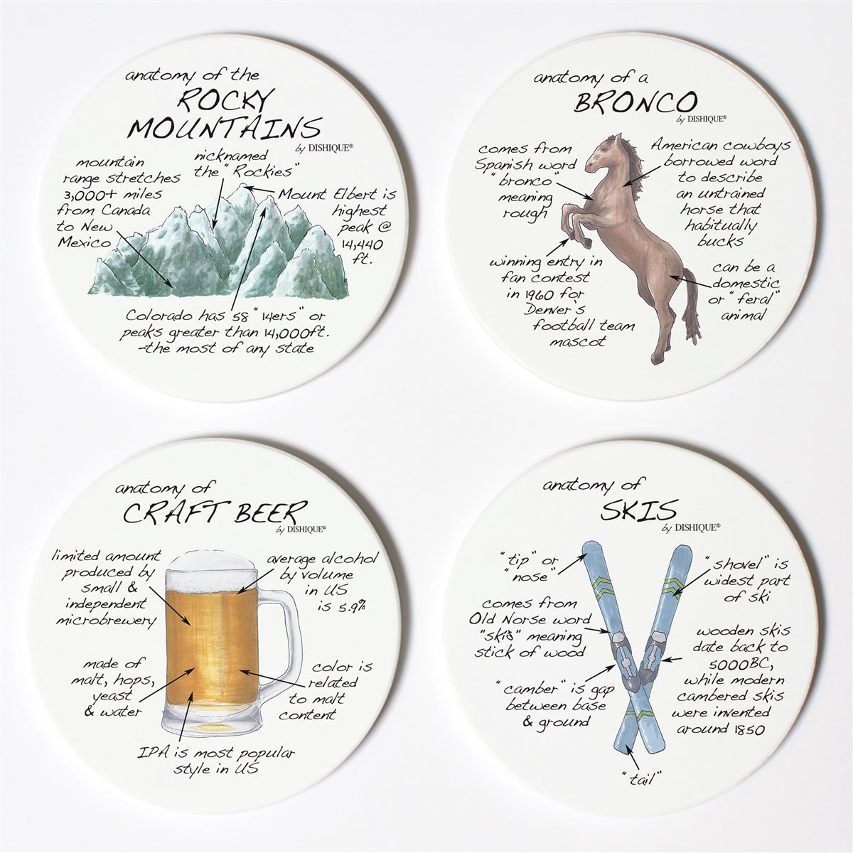 Denver Anatomy Coaster Set