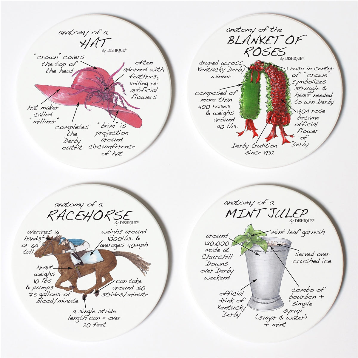 Derby Anatomy Coaster Set