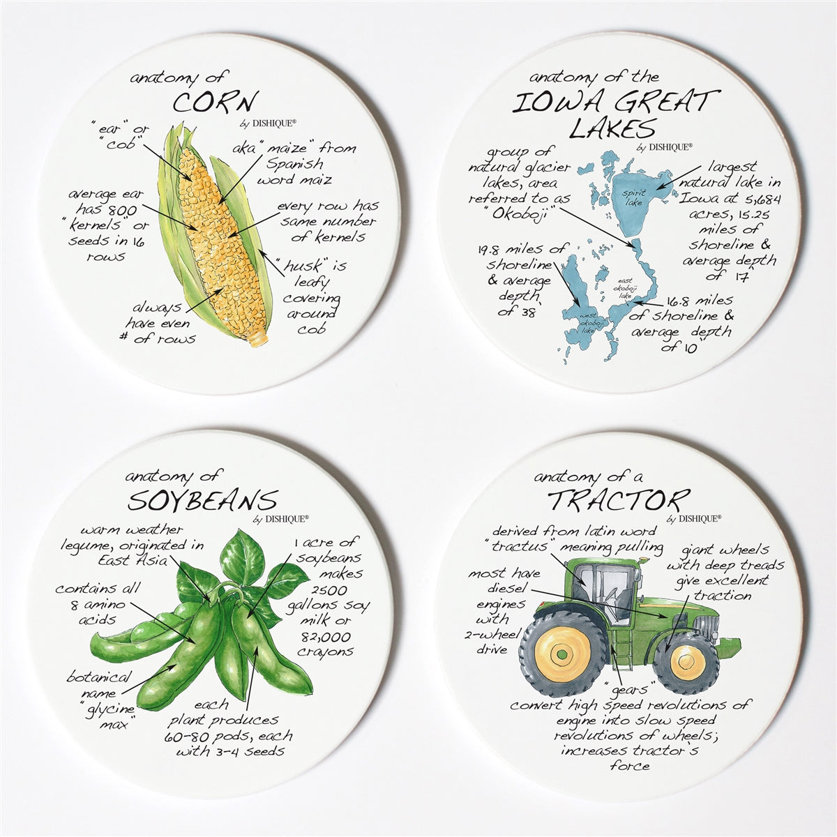 Iowa Anatomy Coaster Set