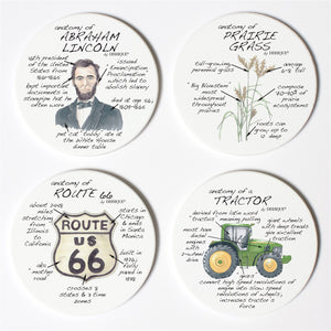 Illinois Anatomy Coaster Set